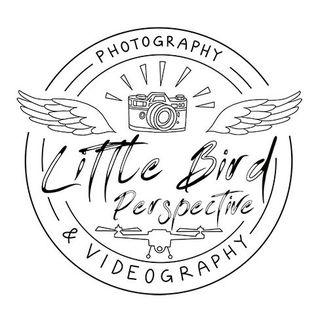 littlebirdperspective
